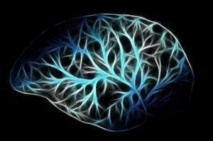 Mrtvice - neboli mozková příhoda