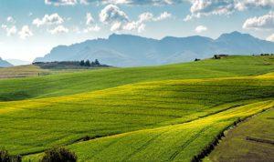 Prodej pozemku a daň z příjmu